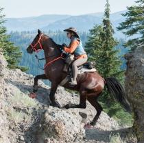 Hard-core endurance riding source