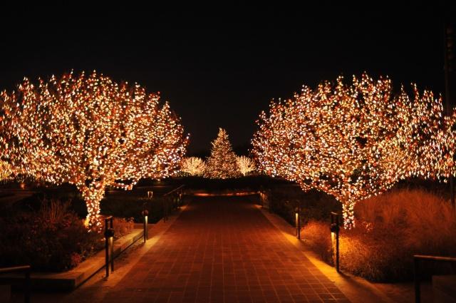 Holiday-Lights-Workshop-CBG-2956