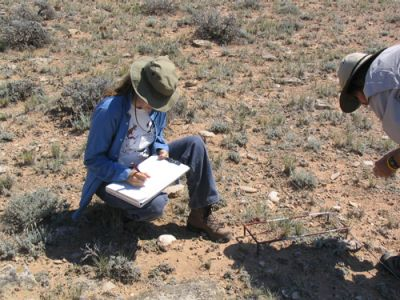 Monitoring grazing areas. Photo source