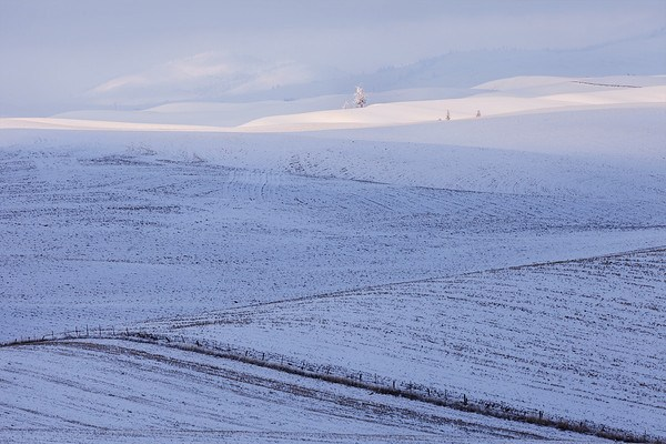 Lovely photo of the Palouse from Aaron Cowan