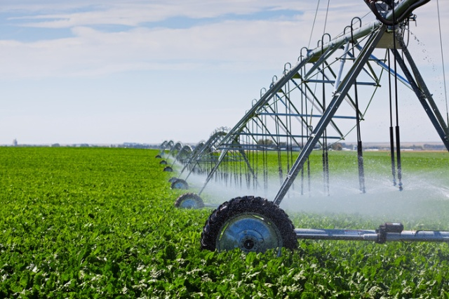 A center pivot irrigation system applies very precise amounts of water, and can be controlled via smartphone!
