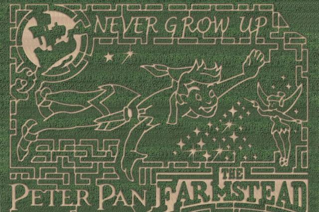 The Farmstead's 2015 Corn Maze Design