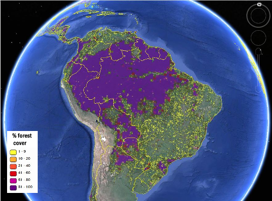 Forest cover map of South America. Photo source