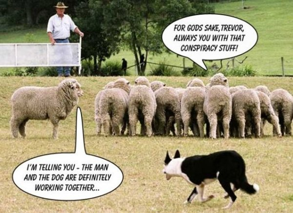 aa-conspiracy-theory-sheep-noting-man-and-dog-working-together-excellent-one